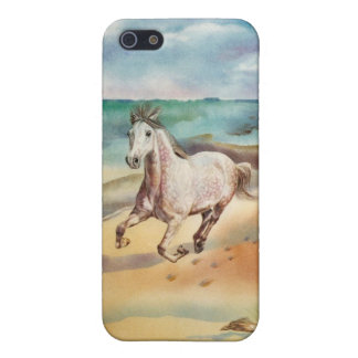 Horse on Beach iPhone 5 Case