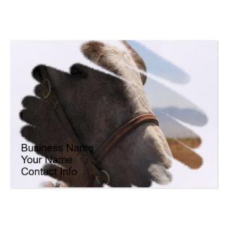 Horse Photo Closeup Business Card