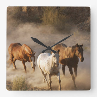 horse photography square wall clock