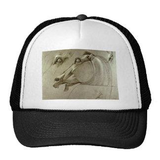 horse-pictures-12 cap