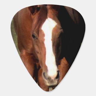 Horse Plectrum