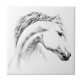 Horse portrait pencil drawing Photo tile