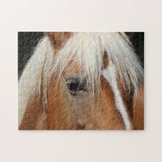 Horse portrait puzzle