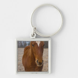Horse pose key ring