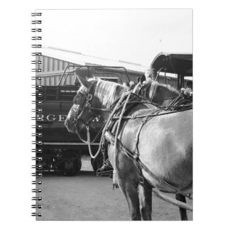 Horse Power and Steam Power Spiral Notebooks