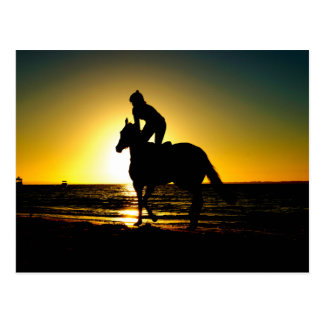 Horse rider beach beautiful scenery postcard