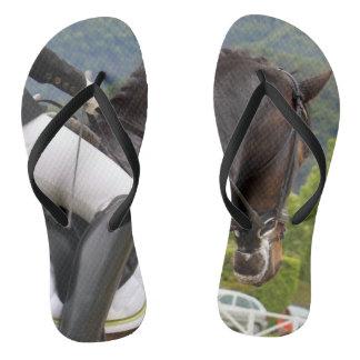 Horse riding thongs