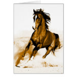 Horse Running Greeting Cards