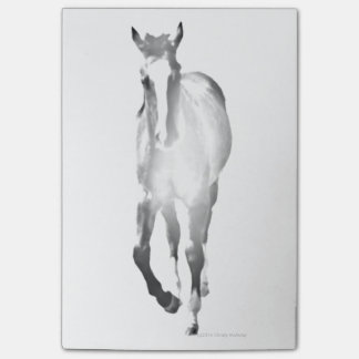 Horse Shadow Post-it Notes