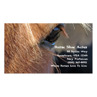 Horse Shoe Acres Pack Of Standard Business Cards