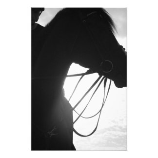 Horse Silhouette Photo Print