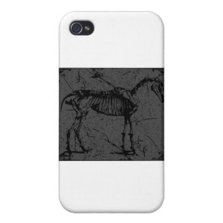 Horse Skeleton Gray iPhone 4/4S Cover