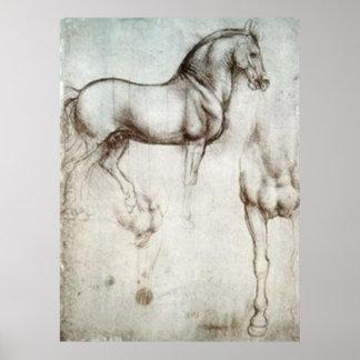 Horse Sketch Poster