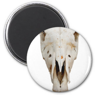 horse skull 6 cm round magnet