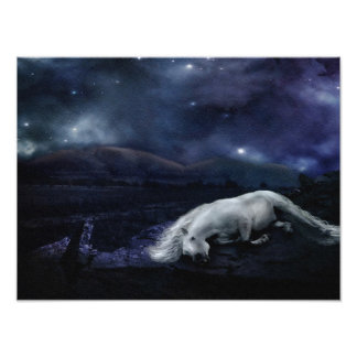 Horse Sleeping Under Stars Photo Print