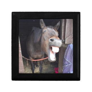 Horse Small Square Gift Box