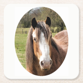 HORSE SQUARE PAPER COASTER