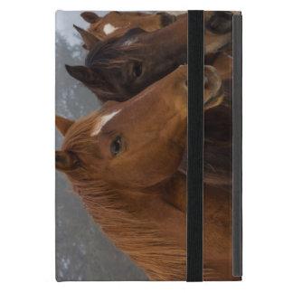 Horse Triplets Cover For iPad Mini