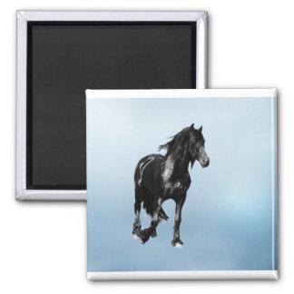 Horse turning suddenly magnet