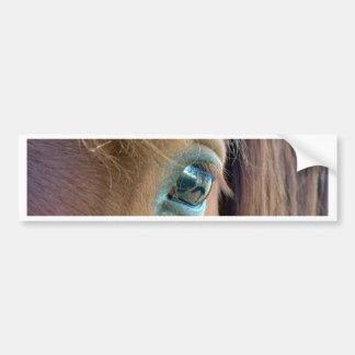Horse Vision Bumper Sticker