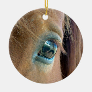 Horse Vision Ornament