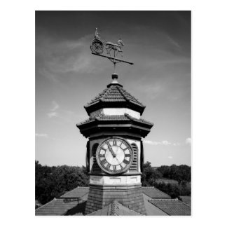 Horse Weather Vane and Clock Tower Postcard