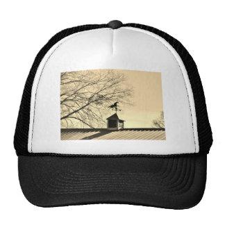 Horse Weather Vane sepia Mesh Hats