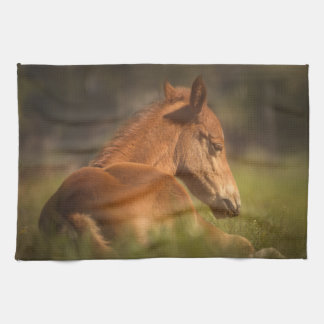 Horse - wild tea towel