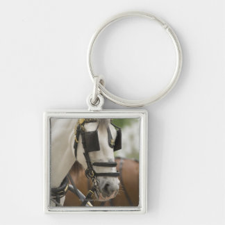 Horse with blinders key ring