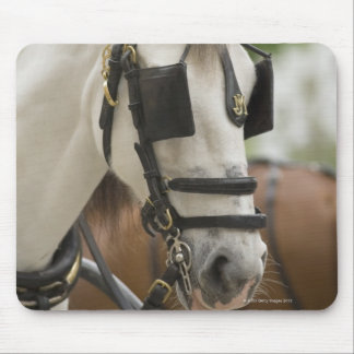 Horse with blinders mouse pad