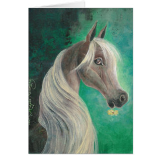 Horse With Daisy Post Cards, Greeting , Note Cards