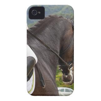 Horse with Raising iPhone 4 Case