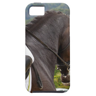 Horse with Raising iPhone 5 Case