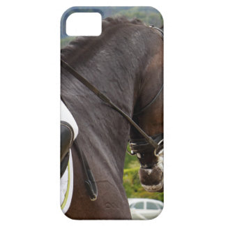 Horse with Raising iPhone 5 Cover