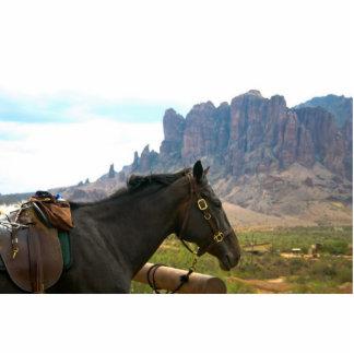 Horseback photo sculpture