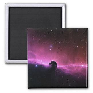 Horsehead Nebula Barnard 33 NASA Magnet
