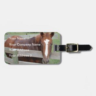Horseplay Travel Bag Tag