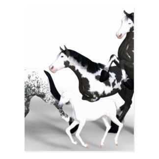 horses-1530858 postcard