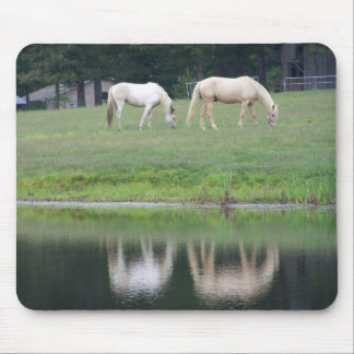 Horses and Pond Reflection Mouse Pad