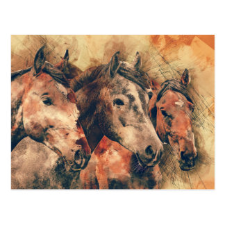 Horses Artistic Watercolor Painting Decorative Postcard
