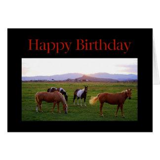 Horses at Sunset Happy Birthday Card