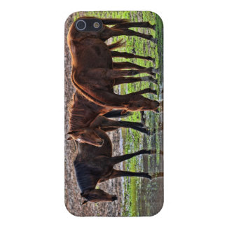 Horses at the watering hole iPhone 5/5S cover