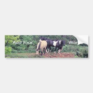 Horses BumperSticker-customize Bumper Sticker