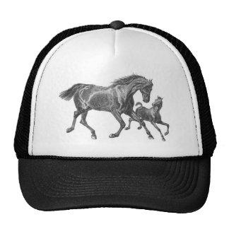 Horses Hat