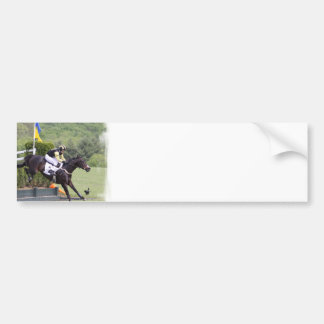 Horses Eventing  Bumper Sticker