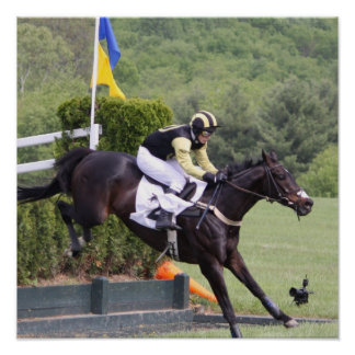 Horses Eventing Poster