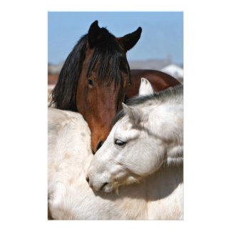 horses farm ranch equine western sports love 14 cm x 21.5 cm flyer