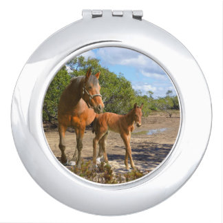 Horses, foals with mare makeup mirror