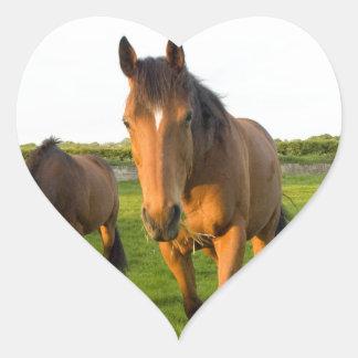 Horses Grazing Heart Sticker