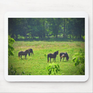 Horses Grazing in The Green Pasture Mousepad